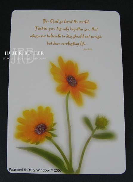 JRB DW sunflower