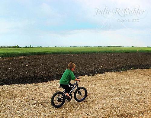 Dylan bike wm