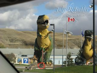 JRB dino statue