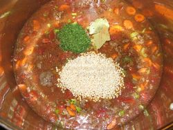 JRB hamburger soup6