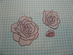 JRB rose tut3