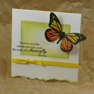 JRB butterfly sponge