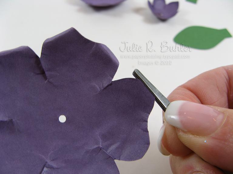 JRB anemone tut 10