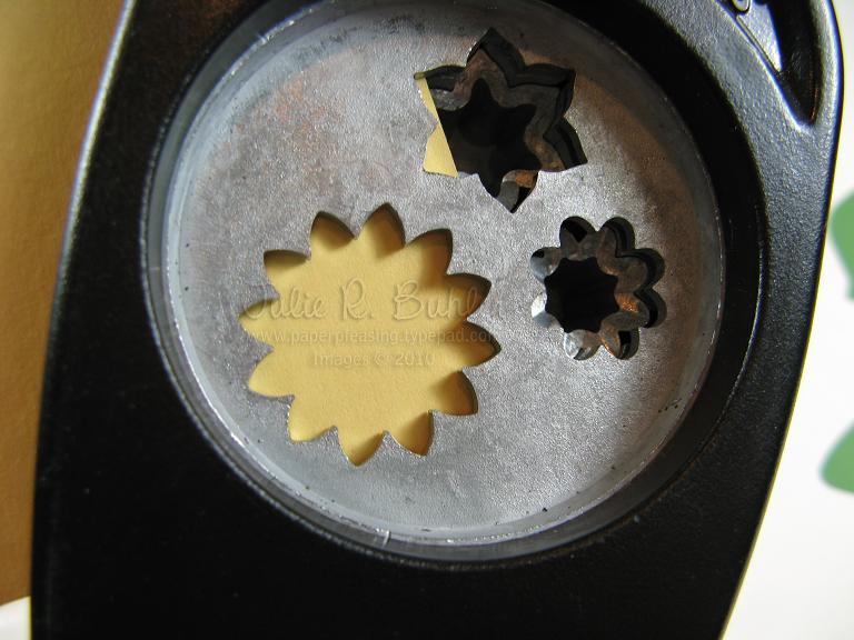 JRB anemone tut 14