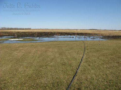 JRB pump hose
