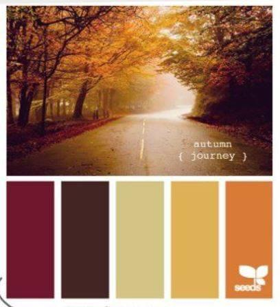 SFR36 fall colors