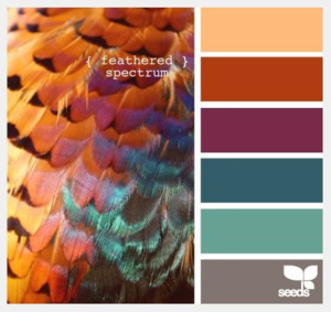 SFR39 color challenge