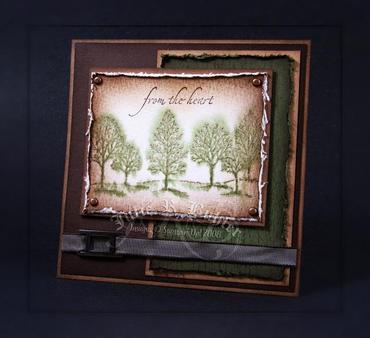 Jrb_wt_spray_trees